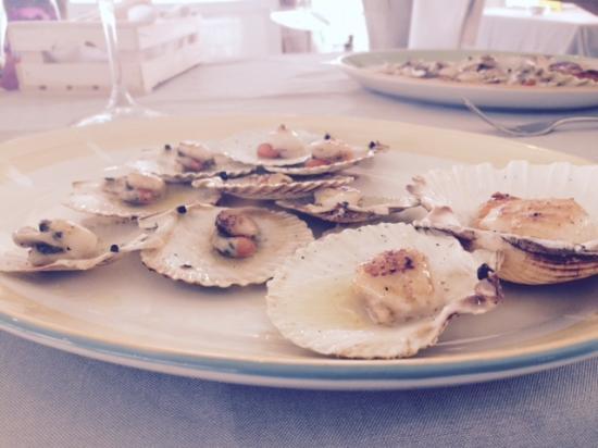 Ristorante Pizzeria Frontemare Nettuno : Excellent sea food starter!!!