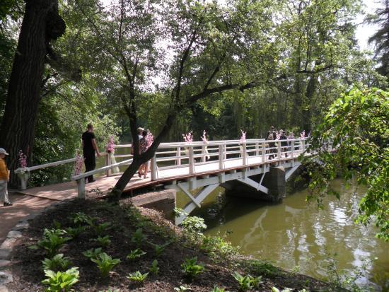 Sofiyivka Park: мост влюбленных