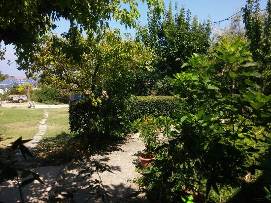 Samothraki-Vacations: Good times!!!