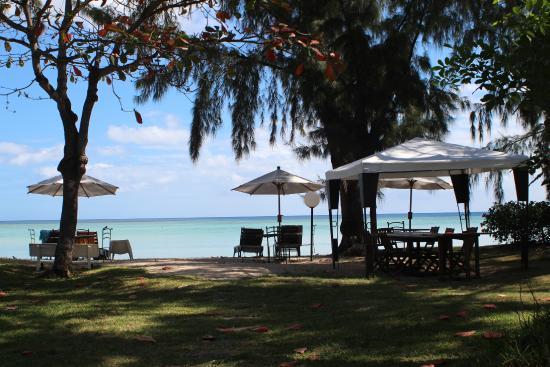 Les Lataniers Bleus: Vue de plage depuis la maison principale