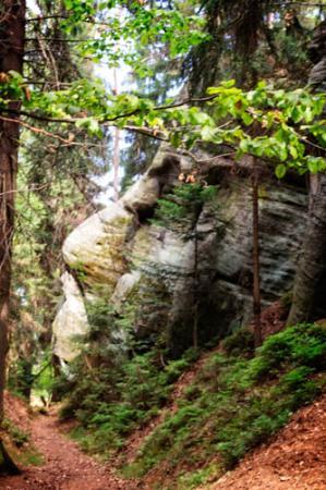 Hradec Kralove Region, République tchèque : Sitting Bull