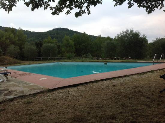 Agriturismo Borgo Spante: Piscina