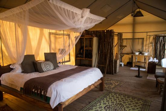 Miombo Safari Camp