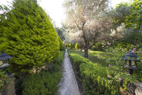 Mesudiye, Turcja: bahçe