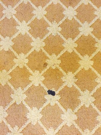 Country Inn & Suites by Radisson, San Marcos, TX: Stained Rug
