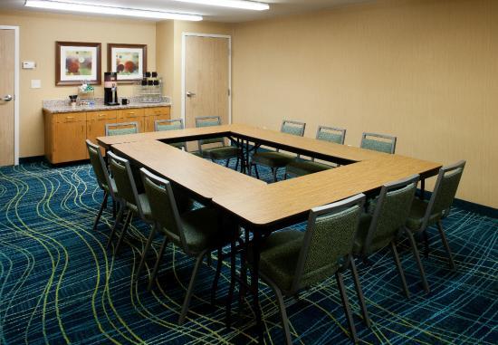 سبرينج هيل سويتس دالاس أرلينجتون نورث: Meeting Space