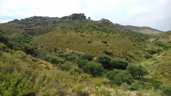 Fitero, Spain: Roscas and an Olive Grove