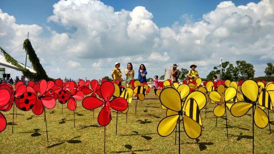 Marina Barrage: ลานกิจกรรม