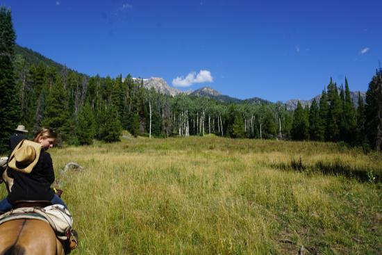 R Lazy S Ranch: View during a trail ride