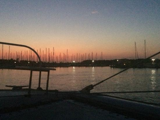 S/V Shenanigans - Private Charters: Headed back into the Harbor after a perfect Sunset