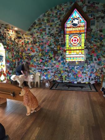 The Dog Chapel : You can't go in and come away without a tear or two
