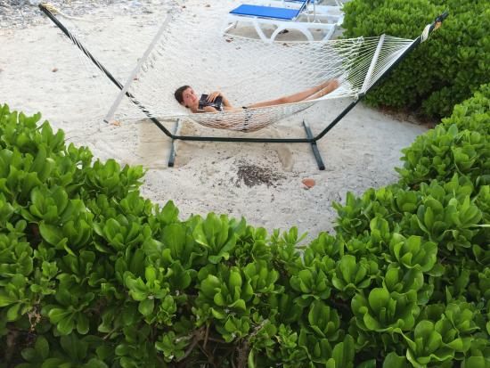 Lucy in a Hammock - Photo de Paradise Villas, Little Cayman ...