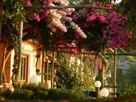 Hotel Il Girasole: Hall