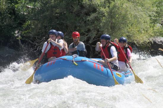 Kokopelli River Guides - Day Trips: Our Raft and Guide