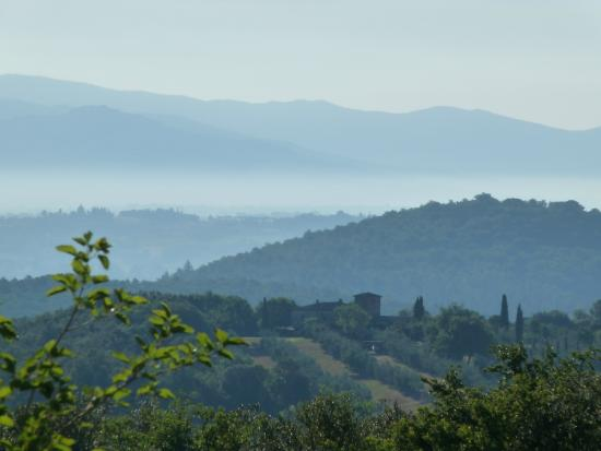 Photo of Calcione Country and Castle Lucignano