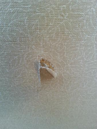 FairBridge Inn & Suites And Outlaw Convention Center: Wallpaper torn off