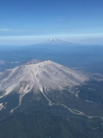 mt. st. helens essay Mt st helens essays the two case studies i chose for my paper are the mount st helen and mount pinatubo volcano eruptions in this paper i will compare and contrasts.