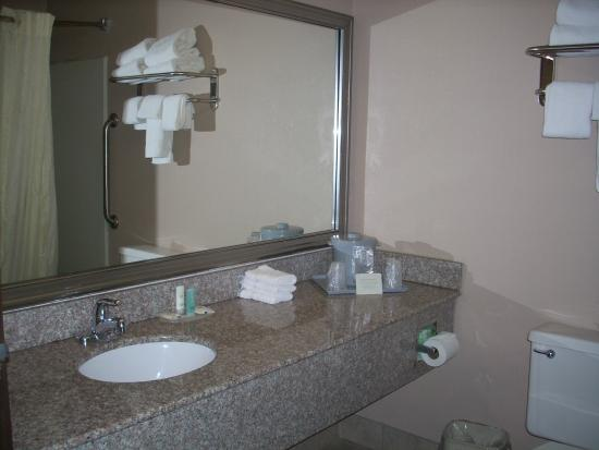 Quality Inn : The bathroom.  Plenty of counterspace room and the usual tub/shower combo.