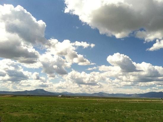 Smithneck Farms: Sierra Valley