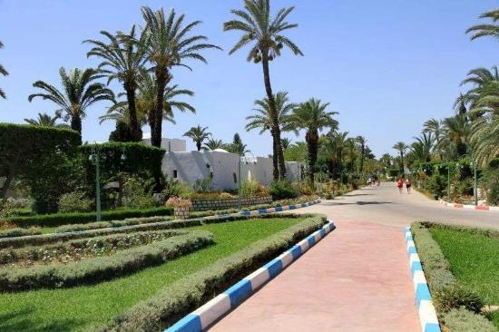 voyage tunisie el shems