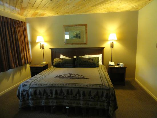 State Game Lodge - Modern Motel Room Interior