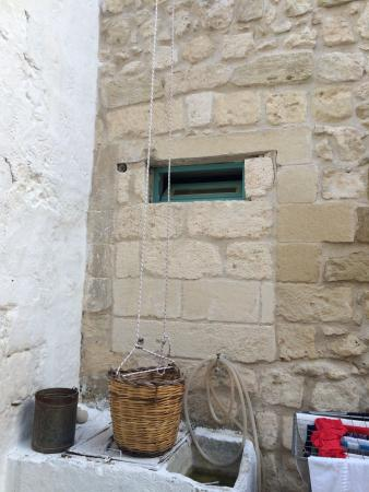 Salento Guesthouse B&B : Shared courtyard1