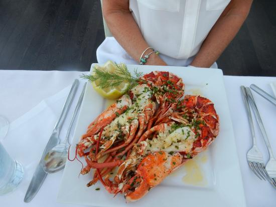 The Bay Hotel: The best ever Lobster