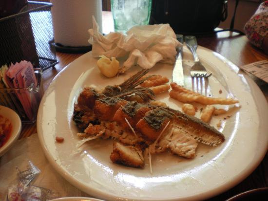 Sammy's Seafood House & Oyster Bar: Tasteless flounder