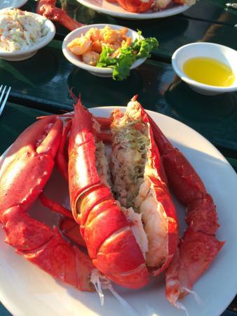Abel's Lobster Pound: photo1.jpg