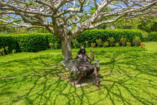 Under Tree Picture Of Na Aina Kai Botanical Gardens Kilauea Tripadvisor