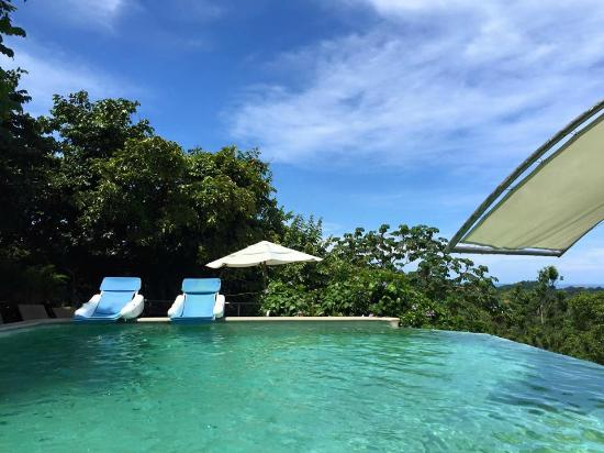 Gaia Hotel & Reserve: Infinity Pool