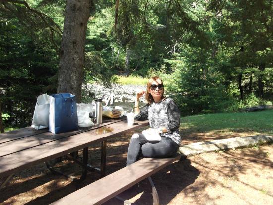Algonquin Provincial Park, Canadá: Picnic