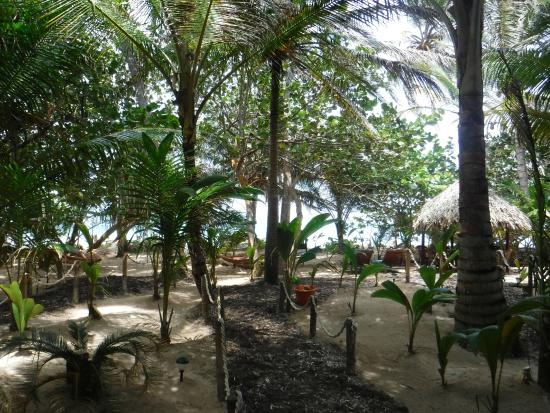 Little Corn Beach and Bungalow: grounds