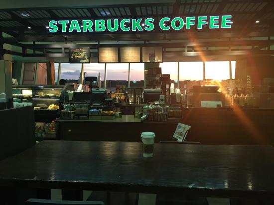 All Starbucks hours and locations in Tampa, Florida. Get store opening hours, closing time, addresses, phone numbers, maps and directions. Starbucks Hours And Locations for Tampa, Florida Category: Coffee Shops Coffee Shops. There are over 11, Starbucks locations in the US.