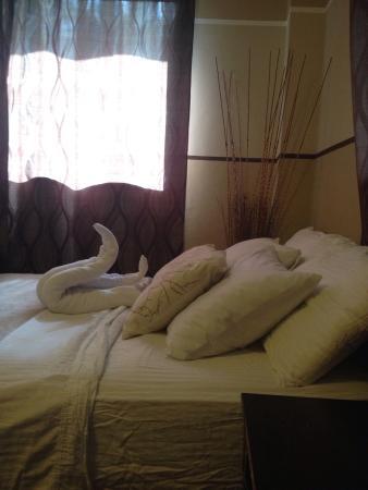 Manglar Lodge: photo1.jpg