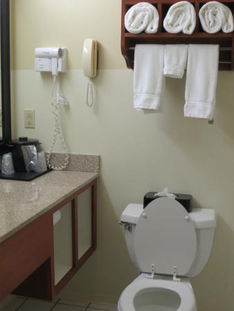 La Quinta Inn & Suites Helena: Bathroom