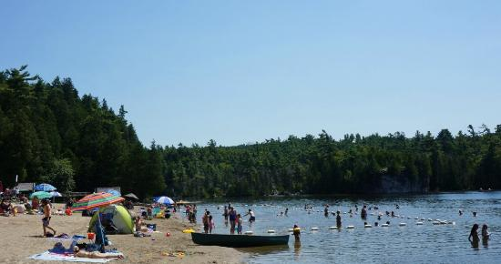 main beach picture of rockwood conservation area. Black Bedroom Furniture Sets. Home Design Ideas