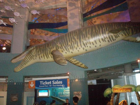 River Monster Not Real Picture Of Adventure Aquarium