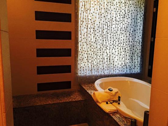jacuzzi tub - picture of the mayo hotel, tulsa - tripadvisor