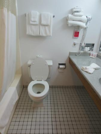 Ramada Richland Center: Bathroom