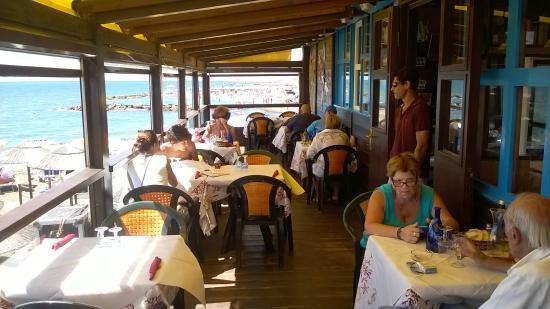Bagni Blue Marlin Nervi : La terrazza picture of blue marlin ladispoli tripadvisor