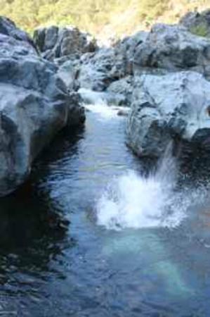 Yuba River: Yubaaaa!!!