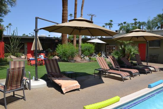 liegen am pool picture of desert riviera hotel palm springs tripadvisor. Black Bedroom Furniture Sets. Home Design Ideas