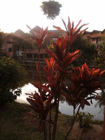 Photo of Hotel Green Park Antsirabe