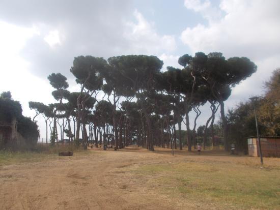 Parco Regionale Urbano Pineto
