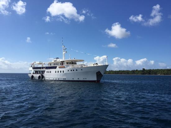 Wakatobi Dive Resort: Pelagian Yacht