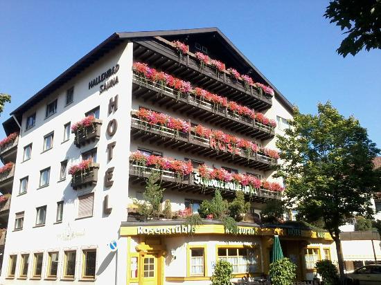 Hotel Rose : zentral gelegen