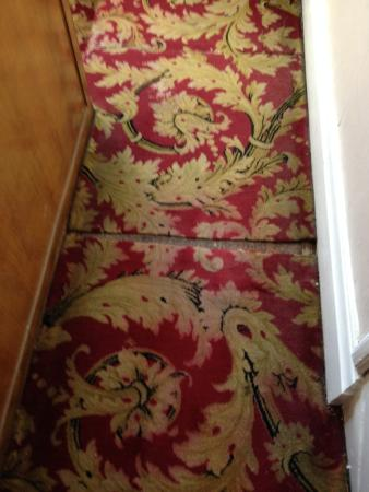 St, Winifred's Hotel: This is the standard of carpet along the satirs. the photo is on its side. Could not turn it on