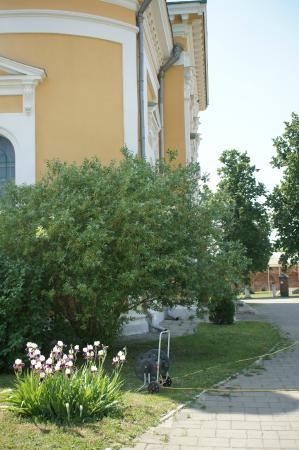 Zaraysk Kremlin State Museum of History, Architecture, Art and Archaeology: На территории кремля в Зарайске