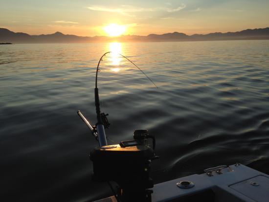 Barkley Sound, Kanada: Afternoon bite